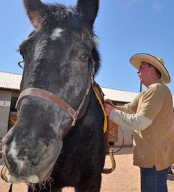 Tommy gets tacked up by Chief Deputy Major Leon Wilmot for his first patrol as part of the Yuma County Sheriff's Office posse.