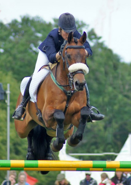 Clea Phillips and Lead the Way at Bramham last year.