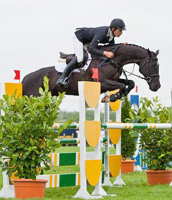 Underdiscussion and Christopher Burton in the jumping phase at Tattersalls in Ireland.