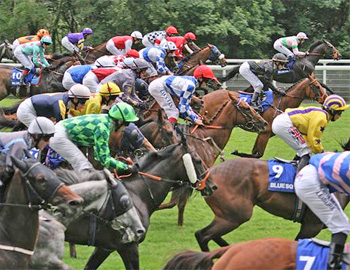 Horse racing needs to stay ahead of the competition with doping cheats. New research provides an analytical method for the detection of the erythropoiesis-stimulating agent peginesatide.
