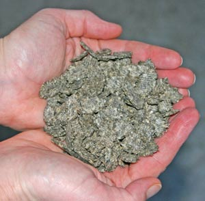 """This type of sugar beet is known as """"speedibeet"""". It soaks in about 10 minutes and is safer for horses prone to laminitis."""