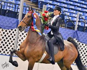 Hunter Chancellor, winner of the 2012 USEF Saddle Seat Medal Final, riding Imagine My Surprise. (Howard Schatzberg)
