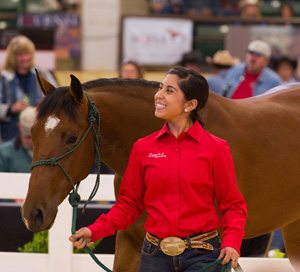 Equine student Vanessa Ybarra leads lot 22 into the sale ring at last year's sale.