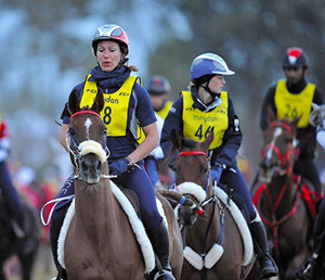 A 120km endurance ride in the Great Park is being run as part of the Windsor Royal Horse show for the first time.