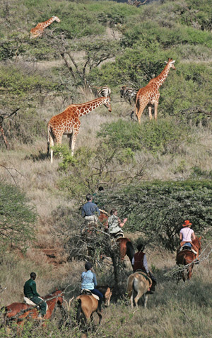 In The Saddle offers a chance for riders to see Kenya's wildlife from horseback.