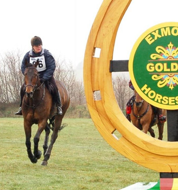 Para rider Sue Salmon earned a gold on Melford Solo.