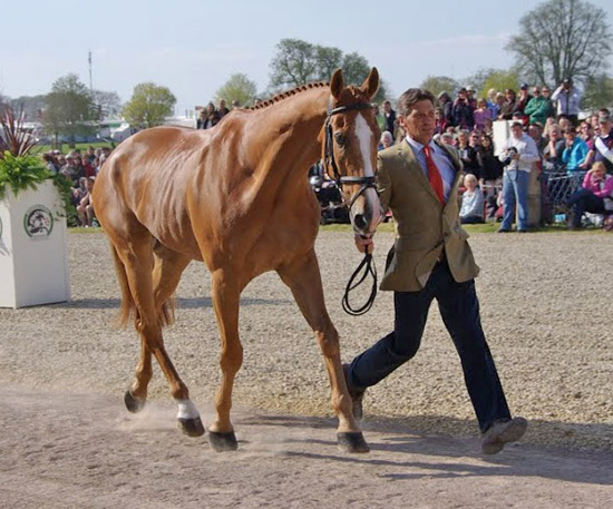 Hot favourite Andrew Nicholson with Nereo at the first horse trot-up at Badminton.