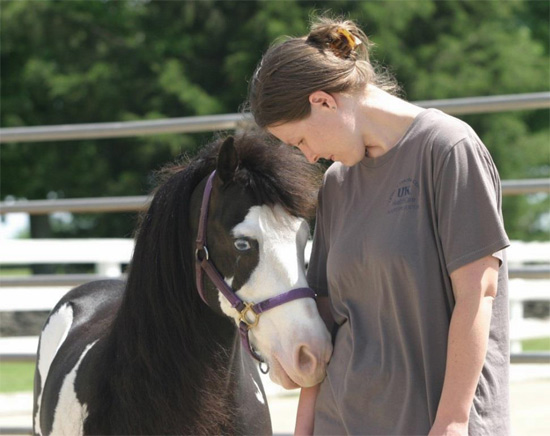 equine-therapy2