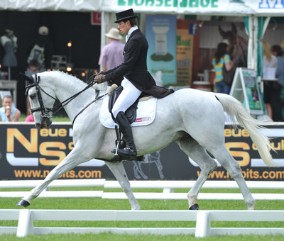 First day CCI3*  dressage leader Maxime Livio and Cathar de Gamel.