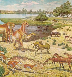 "Miocene fauna of North America, on a mural made for the US government-owned Smithsonian Museum, from the  Time-Life book ""North America""."