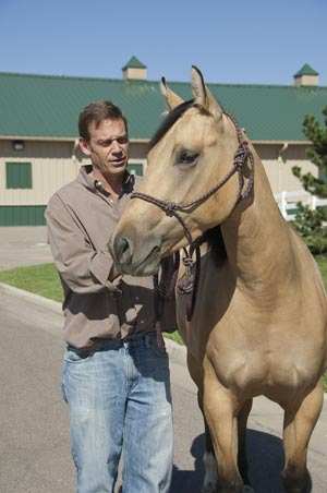 Dr David Frisbie has helped the university to establish notable expertise in Equine Sports Medicine and Rehabilitation. The new gift will support work in this new veterinary specialty at the Orthopaedic Research Center.