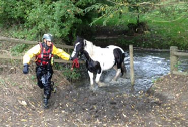 Atcha leads the horse to safety. Photo: Gloucestershire Fire & Rescue