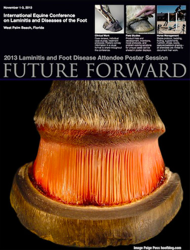The 2013 Future Forward poster session is seeking submissions from delegates to the 2013 International Equine Conference on Laminitis and Diseases of the Foot.