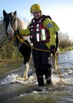 An RSPCA officer leads a horse to safety during the floods.