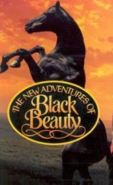 black-beauty2