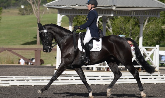 Megan Jones and Flowervale Maserati lead after the dressage phase at the Sydney CCI3*.