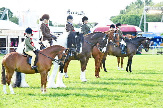 The lineup in the Veteran Horse Ridden Championship.
