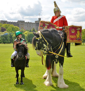 Horses of all shapes and sizes greeted more than 8500 visitors to the opening day of the Royal Windsor Horse Show on Wednesday.