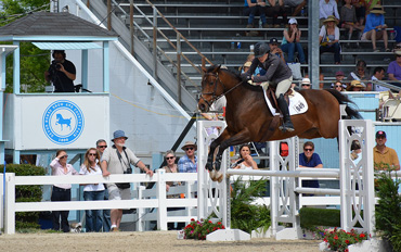 Calvin shows his jumping prowess at the Devon show.