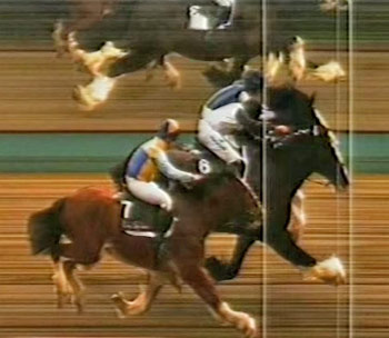 Morpheus prevailed by a short head in a photo finish for the Flying Feathers race at Lingfield.