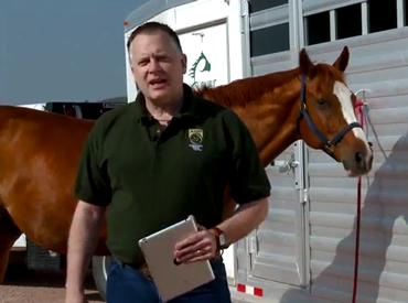 """Paul Morley: """"A few low-cost, common-sense preventative measures will help keep horses healthy while traveling."""""""