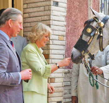 Prince Charles and Camilla, the Duchess of Cornwall, President of The Brooke.