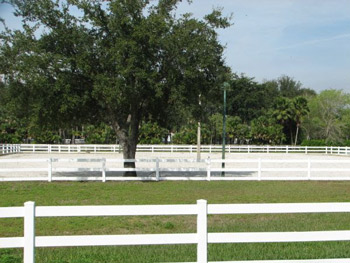 The property has quality ammenities for horse owners.