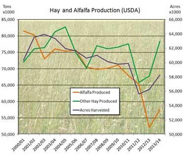 hay-alfalfa2