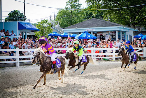 The first race in the 2015 WIHS Shetland Pony Steeplechase Championship Series, is at the Devon Horse Show this weekend.