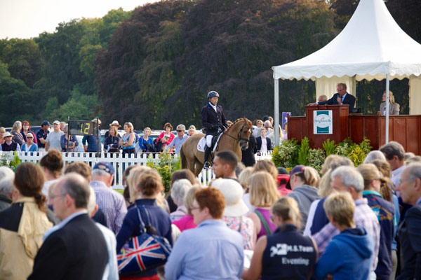 A horse is put through his paces for buyers at the Brightwells Blenheim Elite Event Horse Auction last year