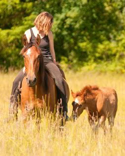 Elsa Sinclair with Mrynah, who was in foal when she was mustered in from the wild.
