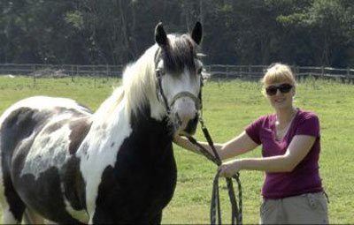 """Jennifer Wathan with Bartie:  """"What surprised us was the rich repertoire of complex facial movements in horses, and how many of them are similar to humans."""" Photo: University of Sussex"""