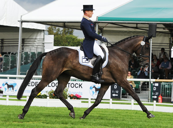 Michael Jung (GER) and FischerRocanna FST during their dressage test at The Land Rover Burghley Horse Trials near Stamford in Lincolnshire, UK, on Thursday.