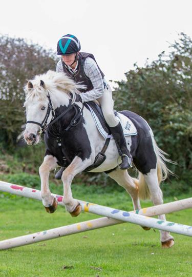 World Horse Welfare Hercules and Alison Ironside.