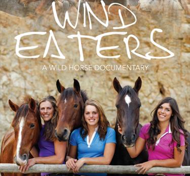 wind-eaters-kaimanawa-wilson