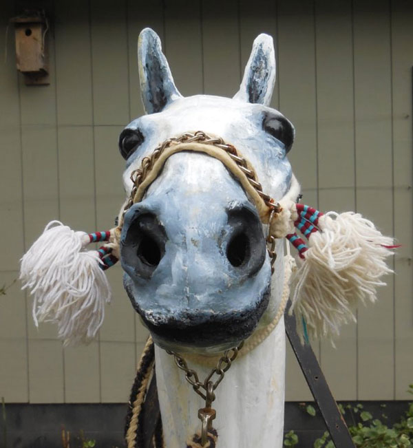 A frontal view of the Bedouin bridle.