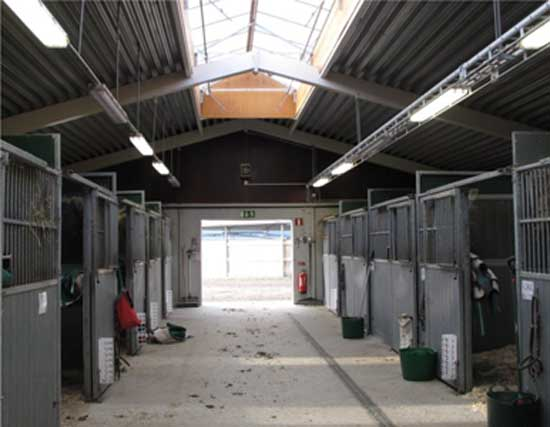 Spacious and bright stable corridors are important. An example of good safety management practice in horse facilities presented in the InnoHorse web tool. Photo: Christina Lunner Kolstrup/Animals
