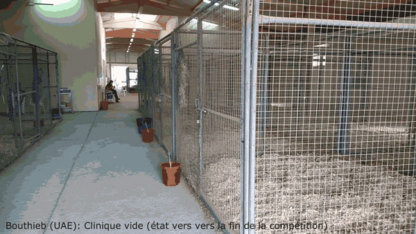 Veterinary facilities were barely used during three days of endurance racing at Bouthieb. Photo: Supplied