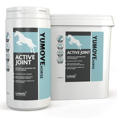 Natural Chondroitin, sourced from Green Lipped Mussels, is the key ingredient in Lintbells Youmove Active Joint product for horses.