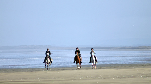 endurance-beach-stock