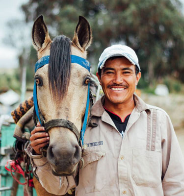 The Brooke, the world's largest international equine welfare charity, is beginning work in Mexico.