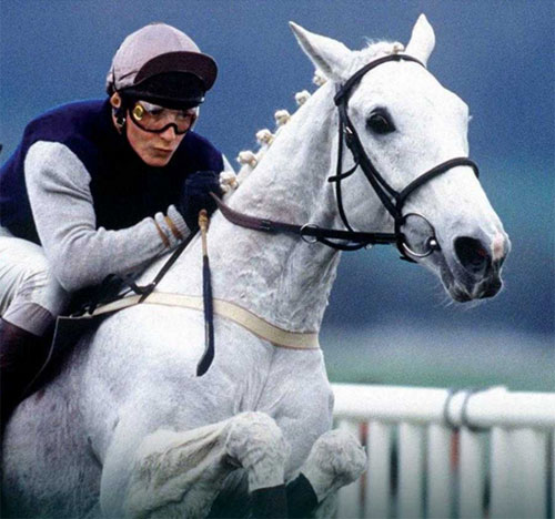 """Richard Dunwoody, pictured on Desert Orchid, from the cover of his book """"The Horses of My Life""""."""