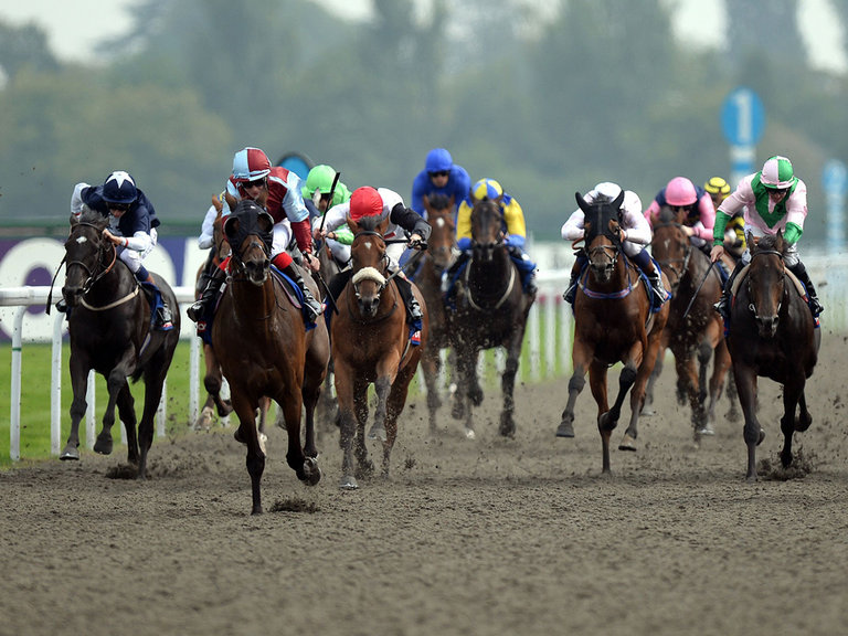 Best All Weather Horse Racing Tips - 4 The Punters