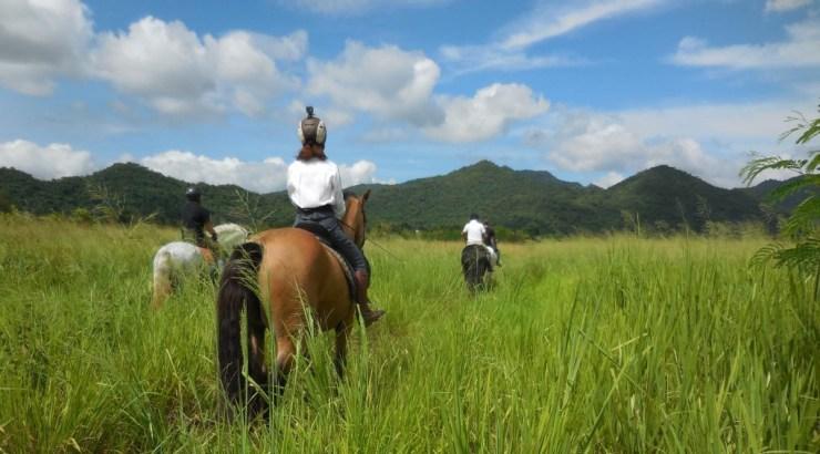 horse riding exotic tour & trips