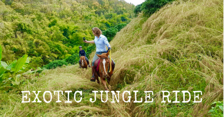 exotic jungle ride