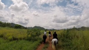Horse Riding Khaoyai Thailand by Ride Journey