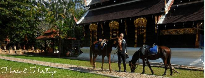 Horse Riding Thailand