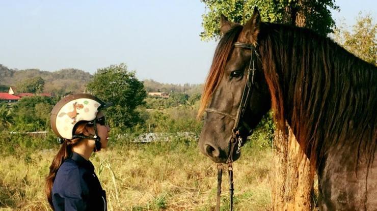Horse-riding-Thailand-Bangkok-Khaoyai-8