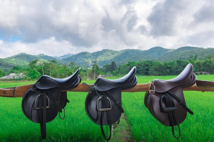 Horse-riding-Thailand-Saddle