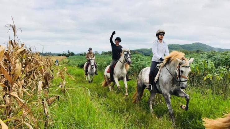 Horseback-riding-Khaoyai-Bangkok-Thailand